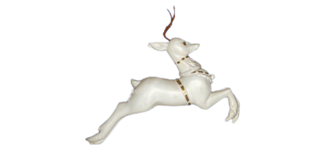 Single Reindeer photo