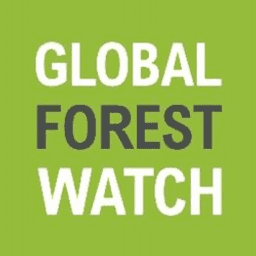Global Forest Watch logo