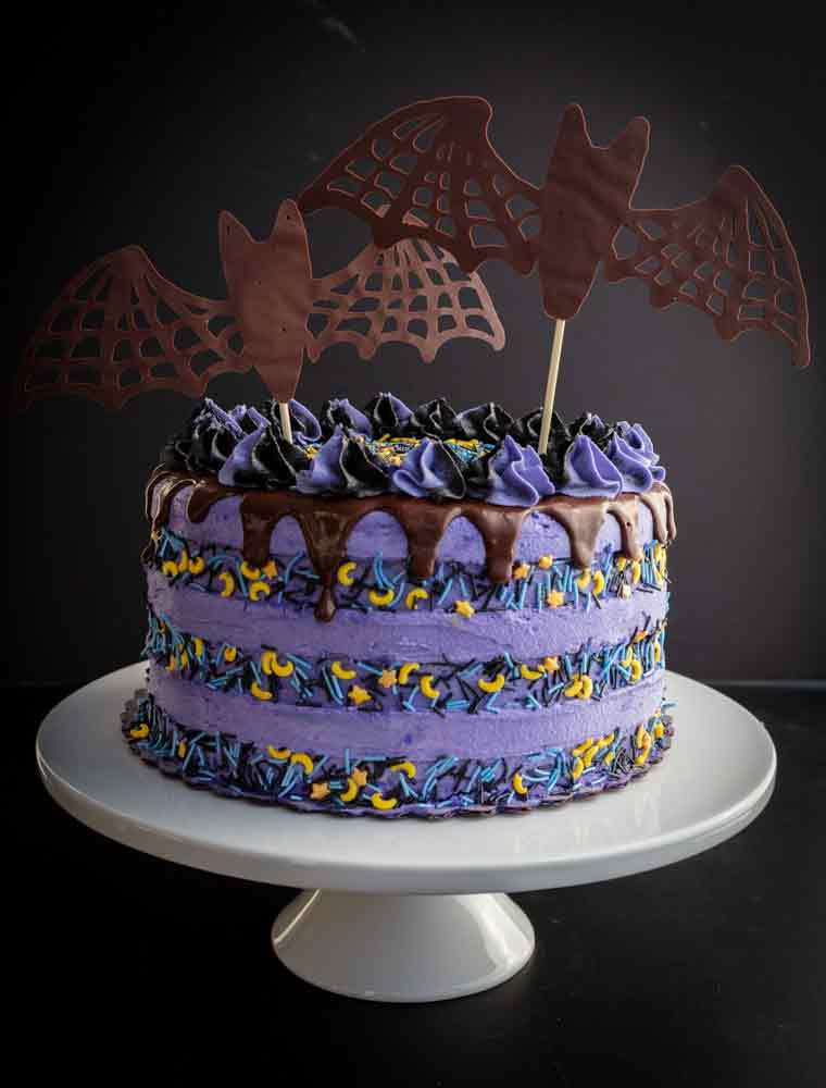 vegan chocolate blackberry halloween cake with bats