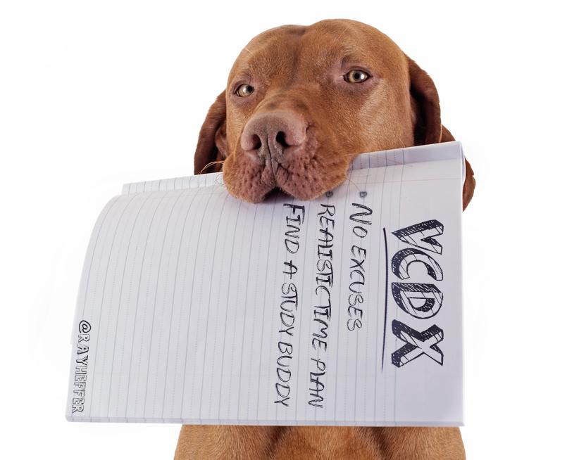 VMware Certified Design Expert (VCDX)