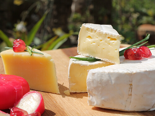 Best Distributors & Suppliers of Cheese, Chocolate, Orana in