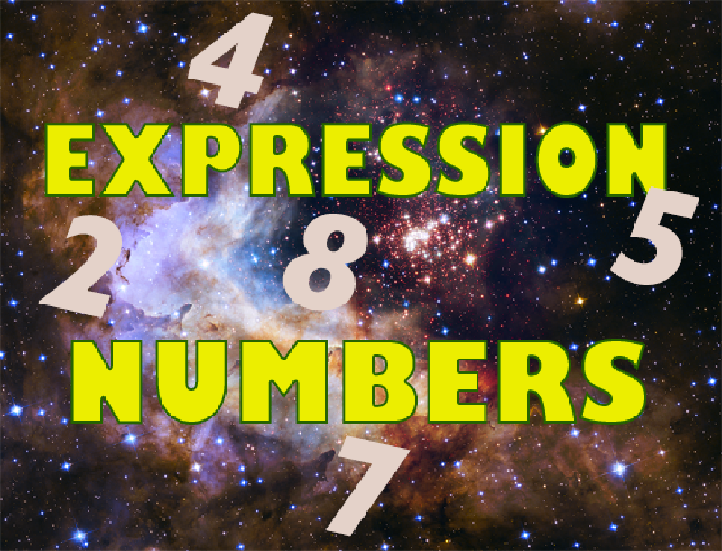 What Are Expression Numbers