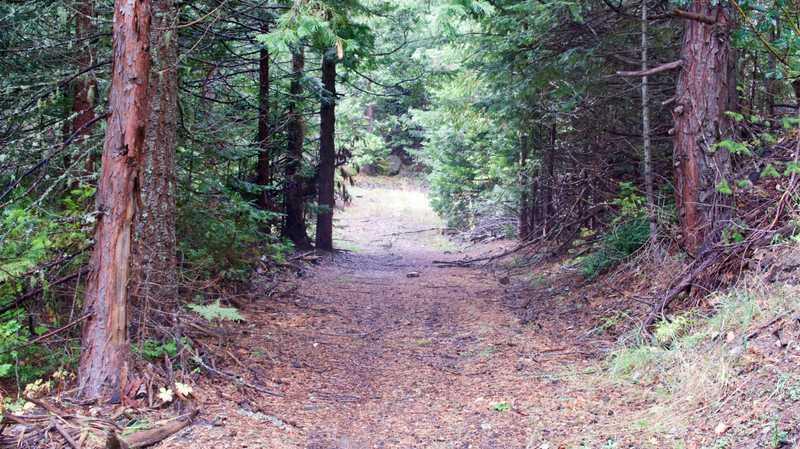 Siskiyou Mountain Wagon Road