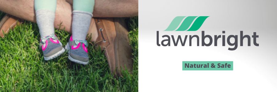 Lawnbright Review - Natural & Safe