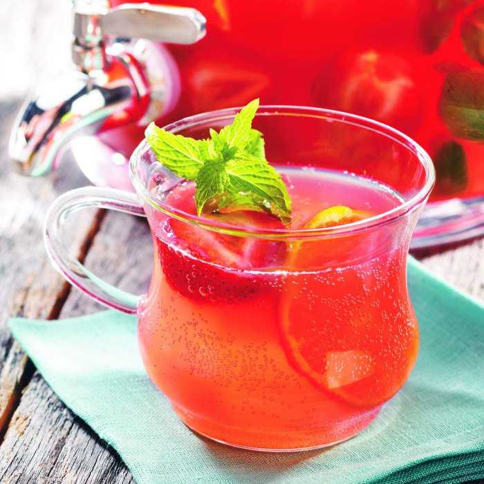 Cranberry Punch Cocktail