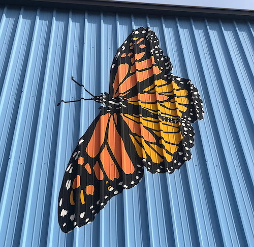 Monarch butterfly painted on the wall