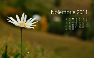 Calendar Noiembrie 2011