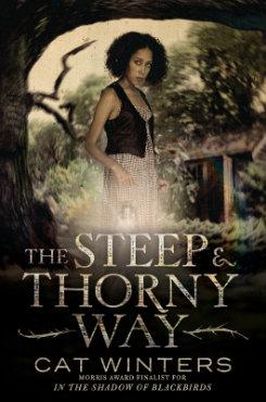 The Steep & Thorny Way