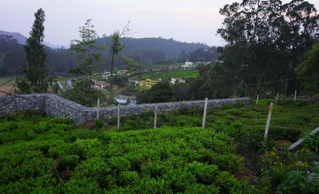 View towards Yedapalli village