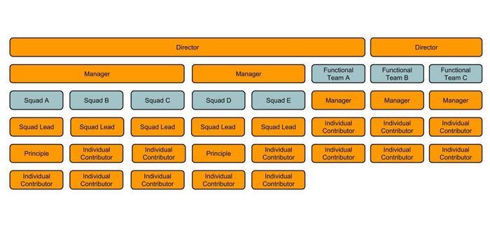 Example Meta Org Design
