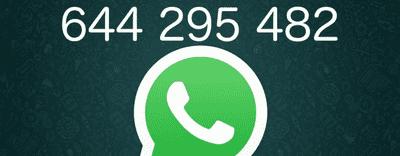 Ahora puedes pedir tus proyectos por WhatsApp