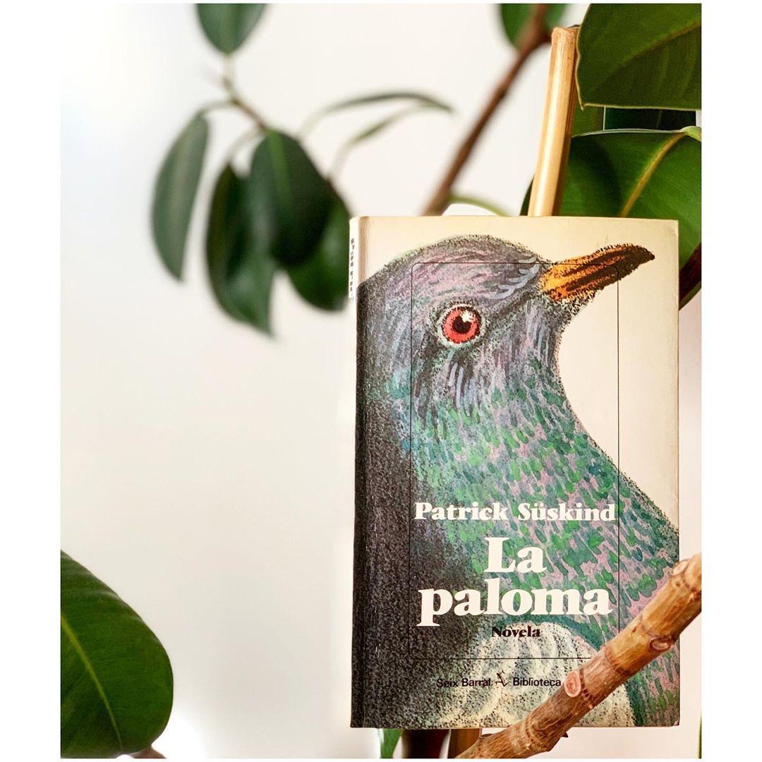 """Imagen de Reseña de """"La paloma"""", de Patrick Süskind"""