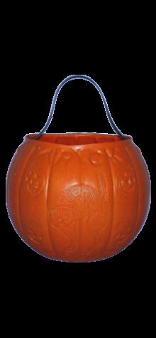 Pumpkin Pail photo