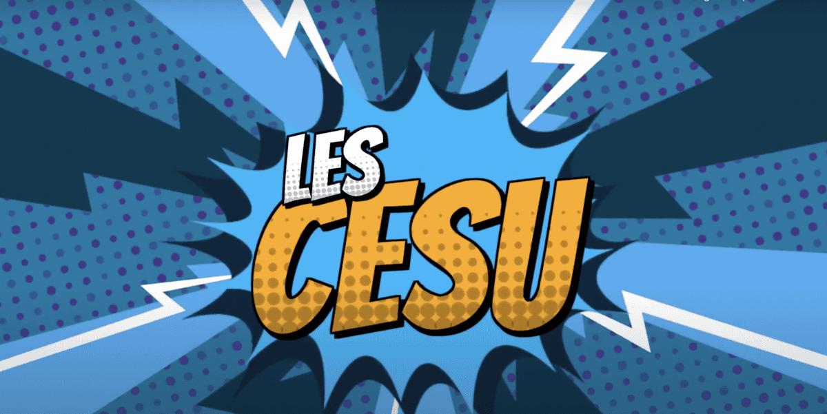 Chefs d'entreprise et Freelances: augmentez votre rémunération de 1830 € / an grâce aux CESU pré-financés!