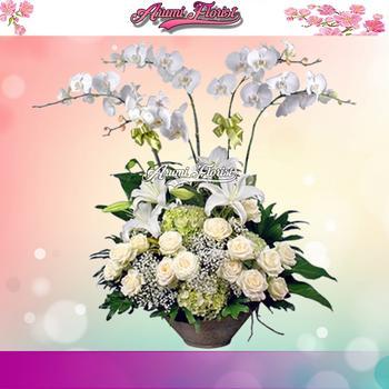 Bunga Anggrek 2