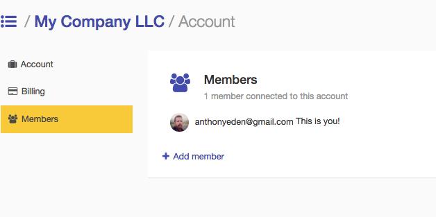Account team members