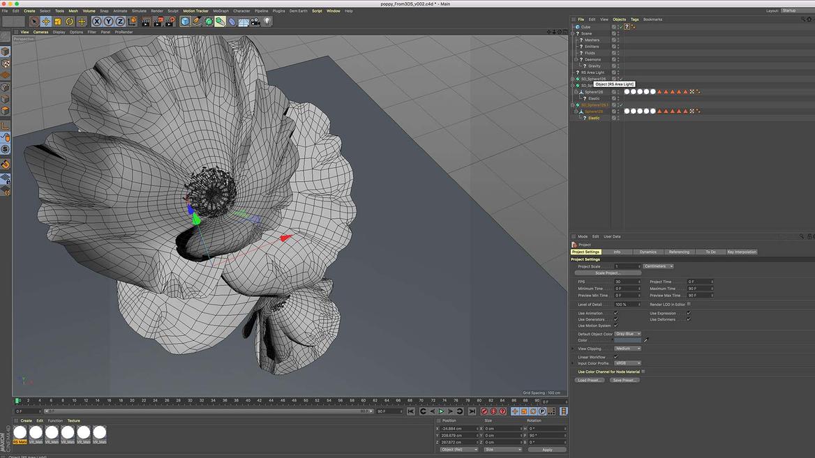 Armistice AWMM image of Flower 3d model
