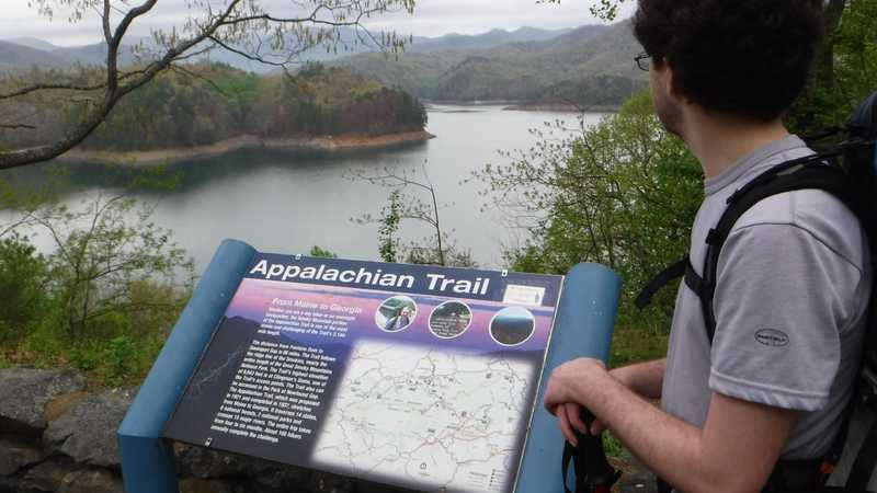 Viewing the lake