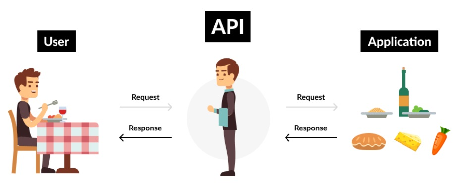 API academy kitchen illustration