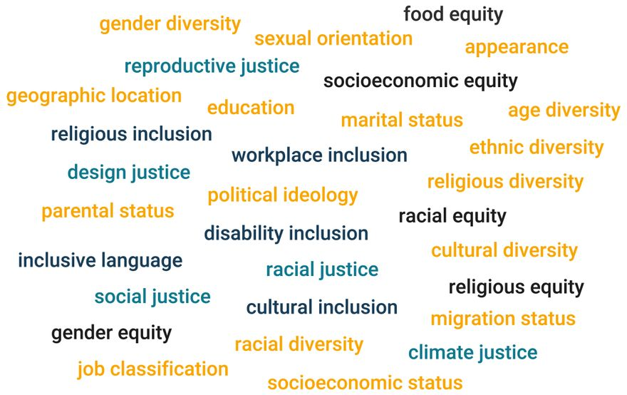 a word cloud showing different terms related to justice, equity, diversity, and inclusion (like racial justice, socioeconomic equity, religious diversity, disability inclusion)