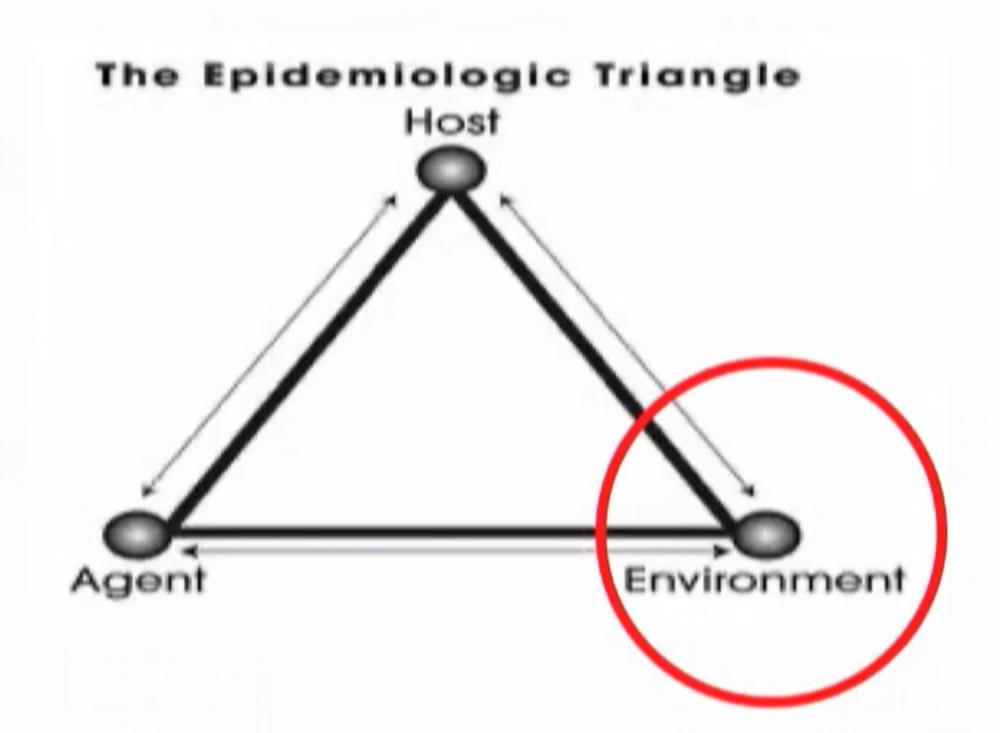 The Epidemiological Triangle highlights the critical role played by the environment, alongside the host and agent.