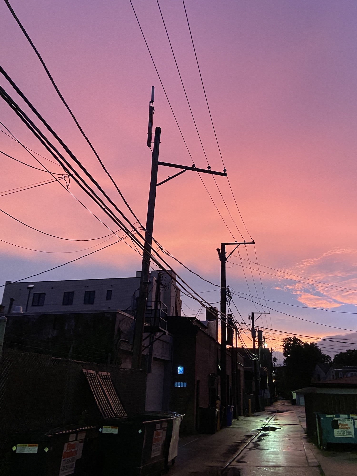 A pink sunset seen in an alley in Chicago in June 2020.