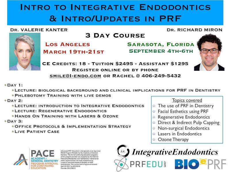 INT.ENDO___PRF_Course_LA3a.jpg
