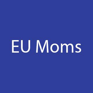 Billy Regnskabsprogram integrerer med EU Moms