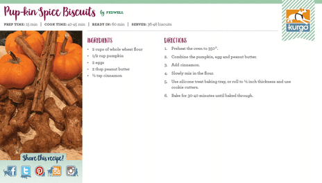 Holiday Recipe: Pup-kin Spice Biscuits