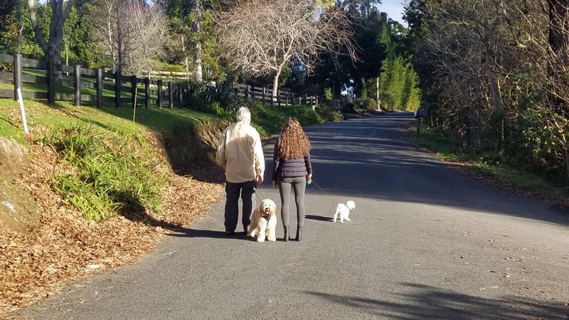 Walking the dogs - and Emma