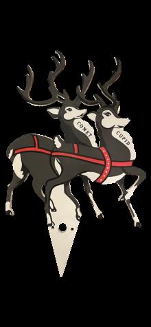 Reindeer photo