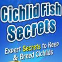 Cichlid Fish Secrets