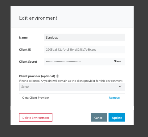 Mulesoft edit environment