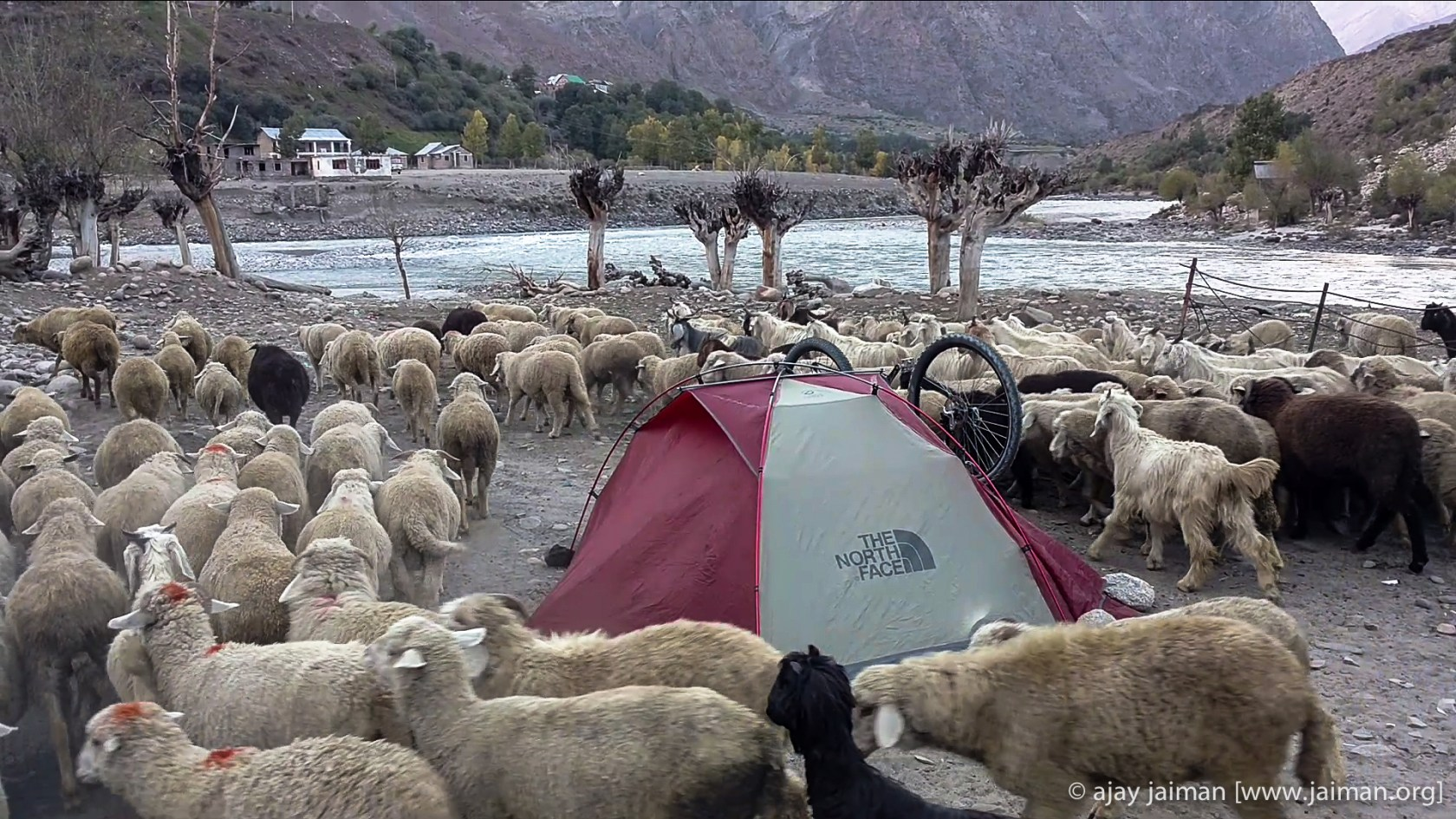 My camp at the Chadrabhaga river right next to the Tandi bridge.