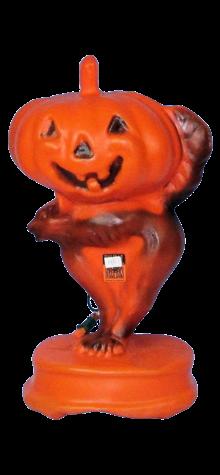 Pumpkin on Cat photo