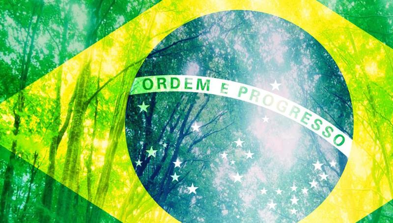 Imagem em destaque para o artigo: 3 leis brasileiras a favor do meio ambiente que você ainda não conhece!