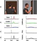 Multisensory contributions to spatial perception