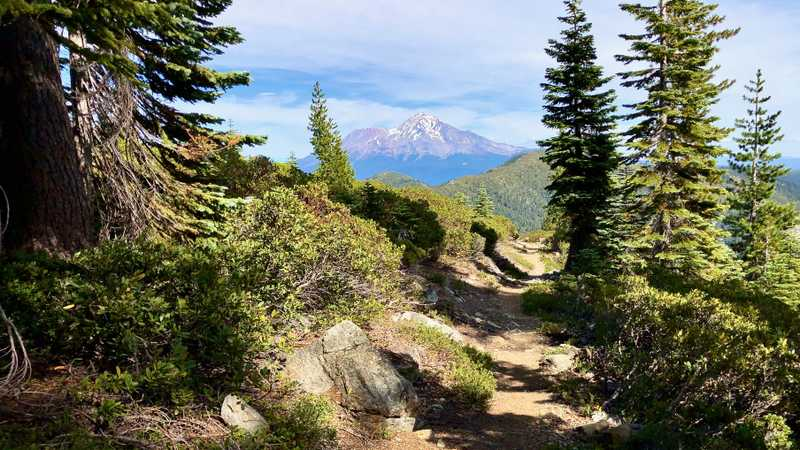 A view of Mt. Shasta from the PCT