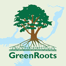 Green Roots Logo