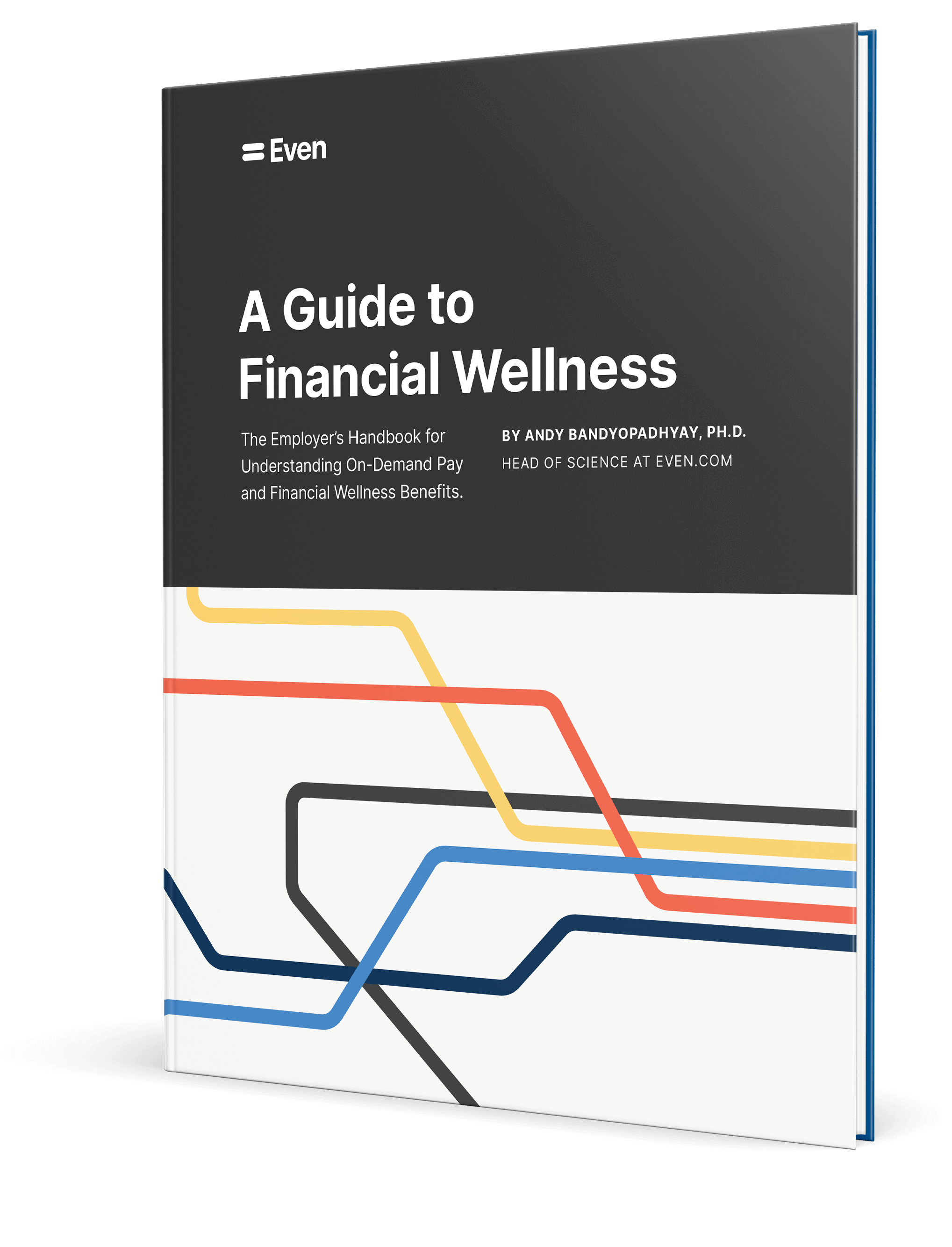 a guide to financial wellness