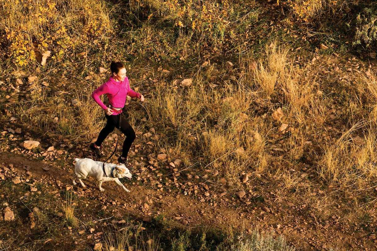 """From the Experts: """"Why I Trail Run with my Dog"""""""