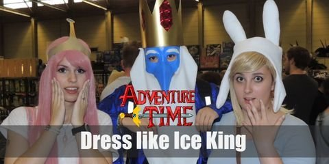 Dress Like Ice King in Adventure Time Costume  sc 1 st  Costumet & Adventure Time Cosplay Ideas u0026 Costume Guides for Cosplay u0026 Halloween