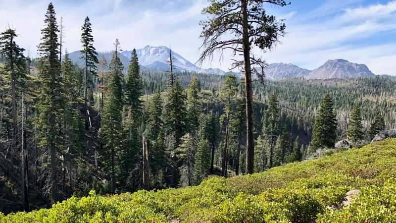 A view of Lassen Peak and Sunflower Flat