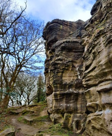 Rocky cliff at Hetchell Wood