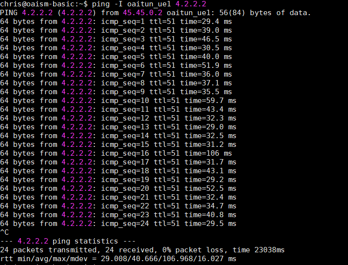 PING Tests From UE To The Internet Via PGW