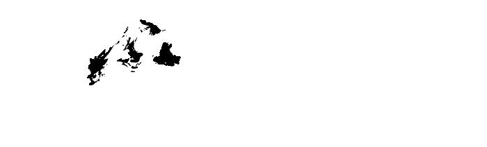 Banner zespolu
