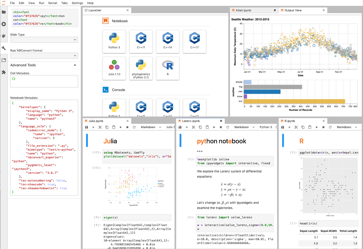 A sample of the Jupyter Notebook interface.