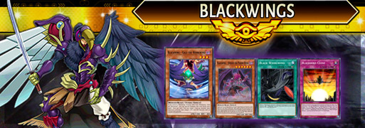 Blackwing Breakdown | YuGiOh! Duel Links Meta