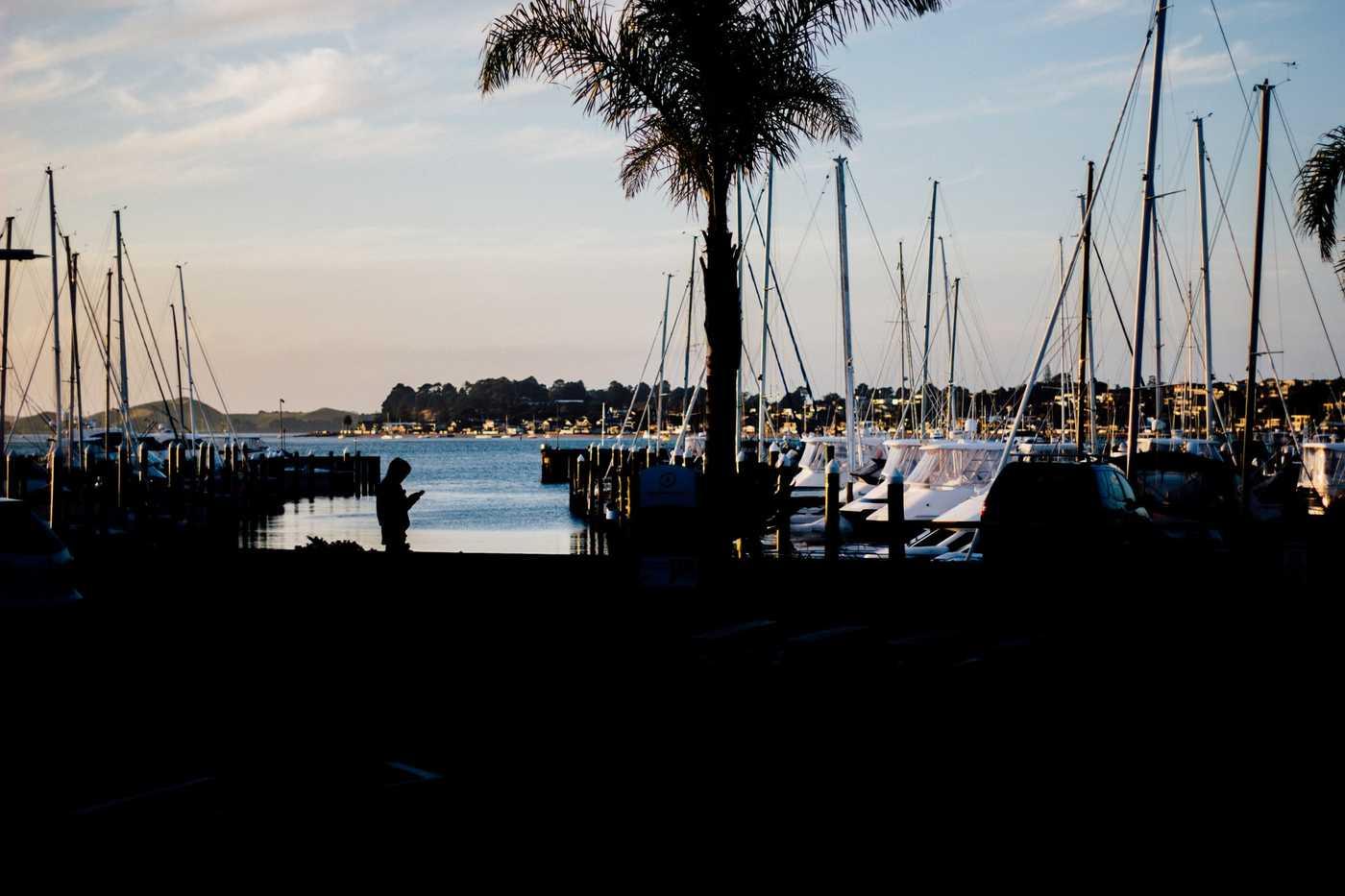 Half Moon Bay, Auckland. Photo by Tim Marshall on Unsplash