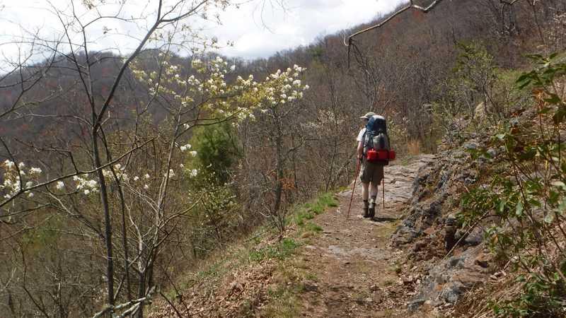 Climbing Shuckstack Mountain